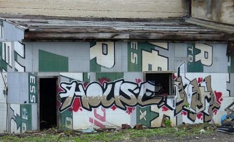 House Berzerker