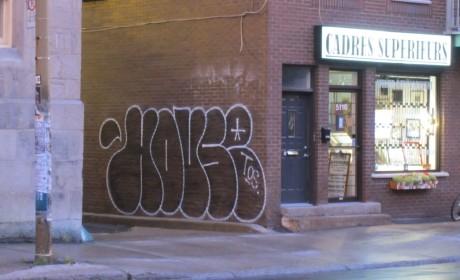 housetos3