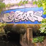 bogus6