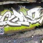 bogus8