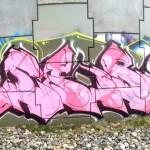 ribs3