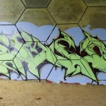 ribsr